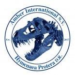 Amber International