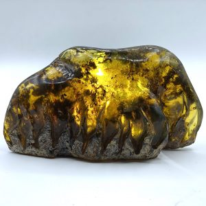 Dominican Amber Flames carving 10.72ozA